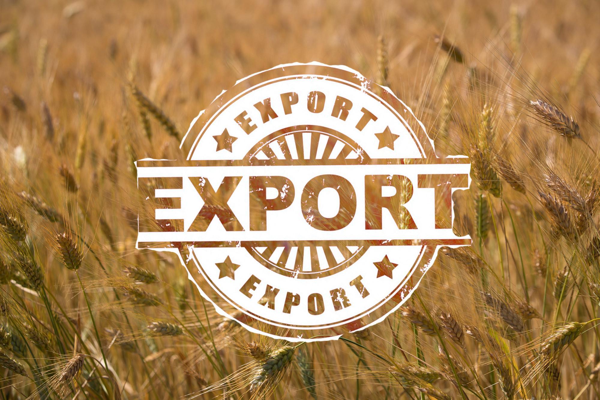 export mapp